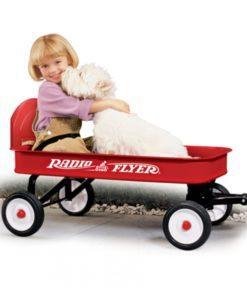ranger-wagon-lifestyle-model-93b